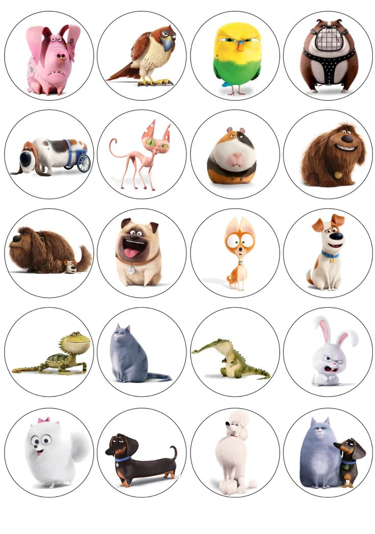 Cupcake toppers . The secret life of pets . Customized . HQ resolution for free PDF leave your email below . I made this for my son 3th bday party .