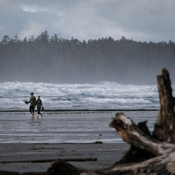 Why you should visit Tofino and Ucluelet during the Pacific Rim Whale Festival. In this article you will also discover the best activities to do in between the festival events. Start planning your visit to Vancouver Island's west coast and explore the beauty yourself.