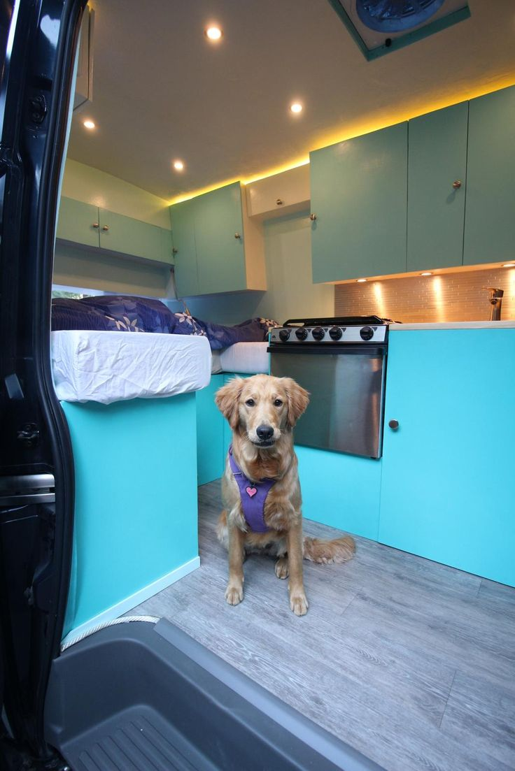 Converted our 2016 Nissan NV2500 into a camper van over the past 13 months. (Bonus Puppy photos!) (#QuickCrafter)
