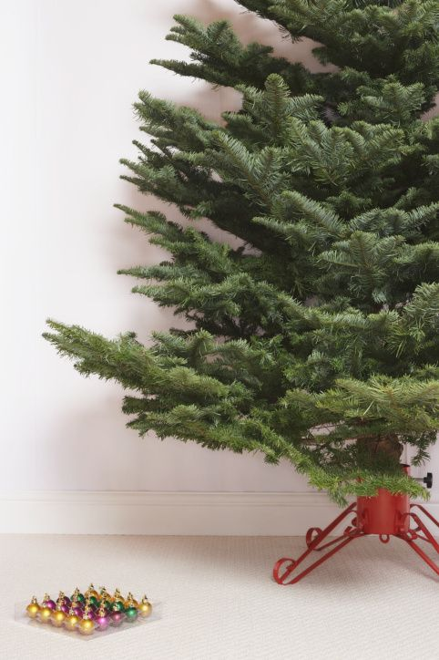 How To Make Your Own Christmas Tree or Floral Preservative: Keep your tree alive by adding a preservative to its water that you can make yourself using common household ingredients.