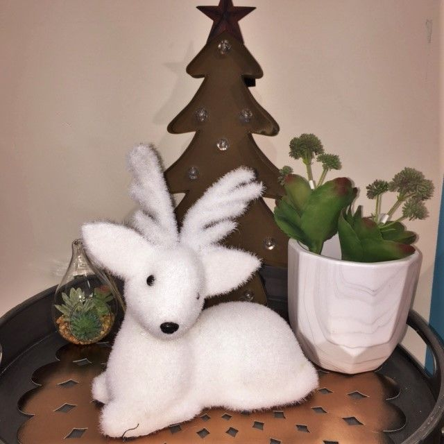 Every home needs a deer, this one is white and sweet.