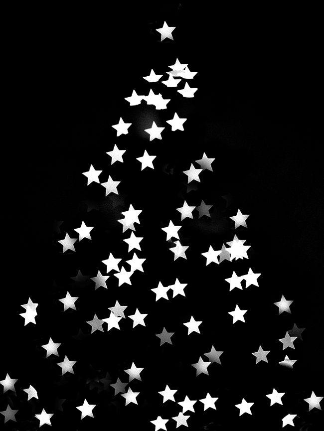 Bert Wallpaper Iphone X Best 25 Christmas Tree Wallpaper Ideas On Pinterest