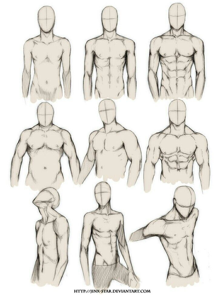 male body types/ poses