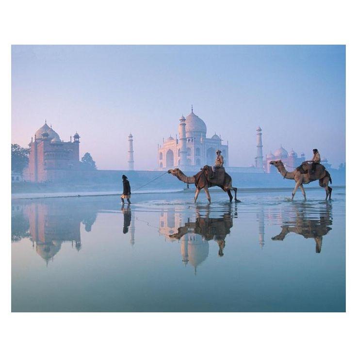 Voyagez tout en restant chez vous avec notre sélection de posters et affiches comme cette affiche du Taj Mahal en Inde !  #habillezvosmurs #voyages #Affiches&Posters #Inde #monuments #beauté #design #deco #magnifique #inspiration #homedecor #eclatdeverre Découvrez tous nos posters et affiches sur notre site en suivant ce lien => https://shop.eclatdeverre.com/fr/14644-affiches-posters?p=2?utm_source=pinterest&utm_campaign=decoMPAffichesetPosters&utm_medium=post&utm_content=130417