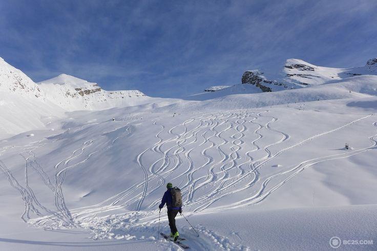 Paradise Bowl near Campbell Icefield Chalet #BackcountrySkiing #Skiing