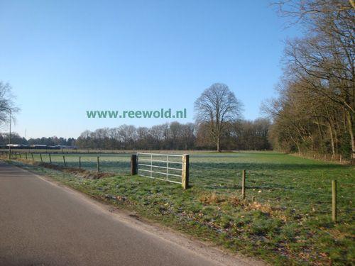 Chaletpark Reewold