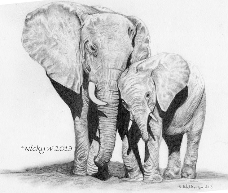 Graphite pencil drawing on Strathmore paper of a Mother and baby elephant.