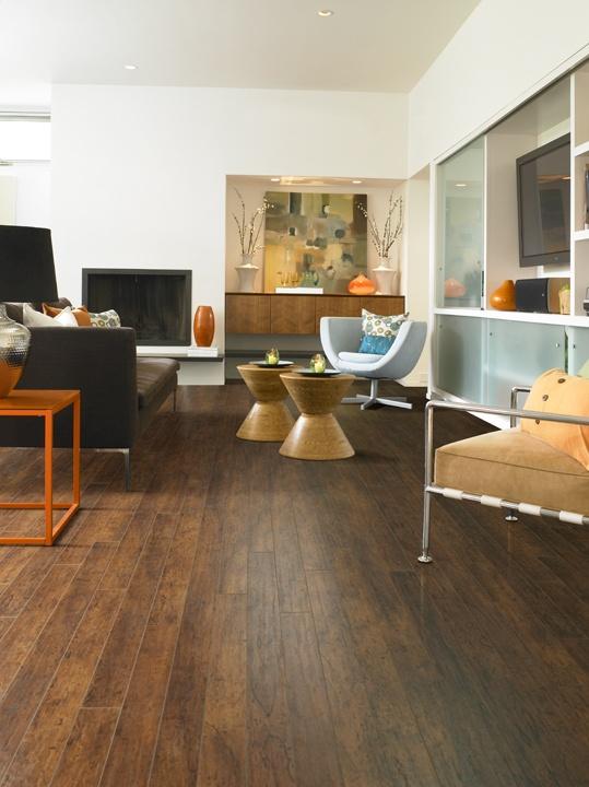 La Terazza  Laminate Flooring  HGTV HOME Flooring by Shaw