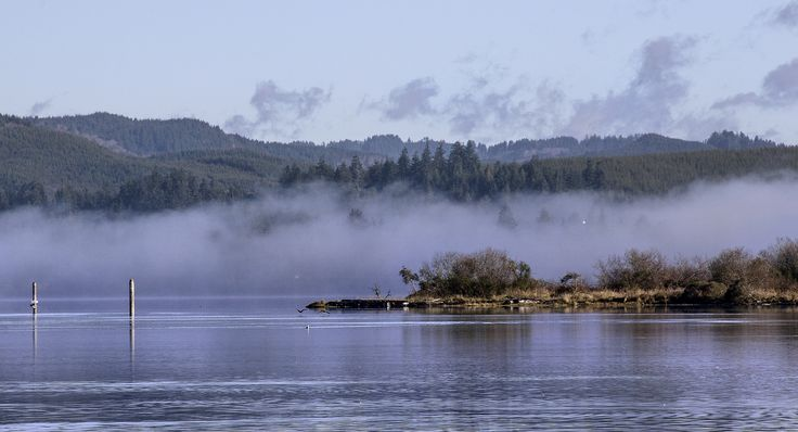 Morning fog in Coos Bay | © Sheila Sund/Flickr
