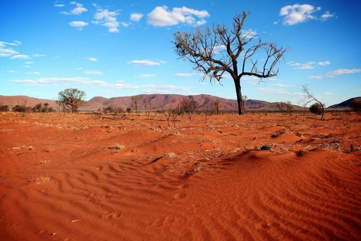 Australian desert - Google Search