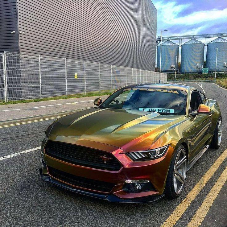 3000 best Mustangs ima...