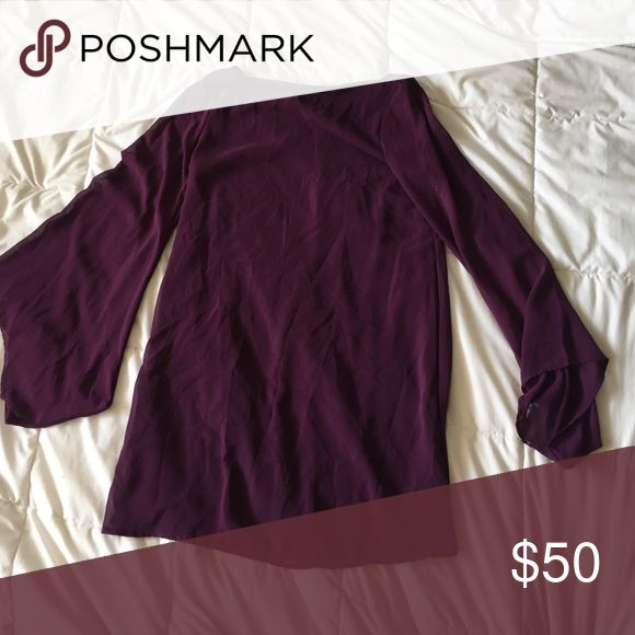 Classy purple winter dress Plum purple, great for going out, long sleeve flowy. Very comfortable Lush Dresses Long Sleeve