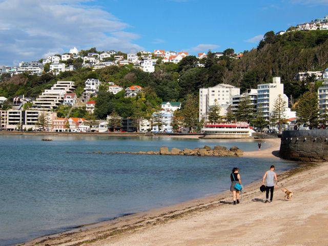 Photo of the Week: Oriental Bay in Wellington