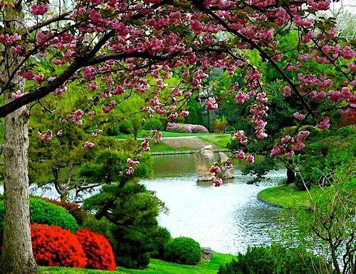 #landscape #garden http://www.leovandesign.com/2013/07/lawn-and-garden-maintenance-tips.html