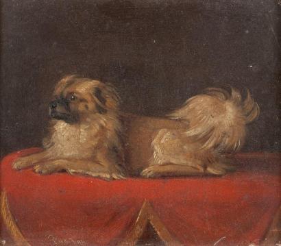 ÉCOLE FRANCAISE XIXE SIÈCLE  Portrait de chien pékinois sur drap rouge Petit panneau signée en bas à gauche et datée 1871?