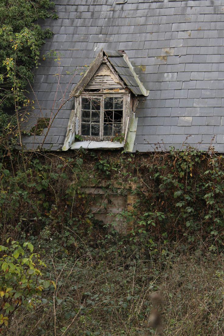 Exterior Window Design