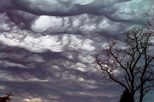A New Kind of Cloud? Say Hello to the Undulatus Asperatus : TreeHugger - http://www.treehugger.com/natural-sciences/new-cloud-undulatus-asperatus.html
