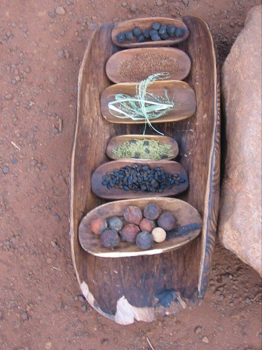 "'Bush' resources, for counting, storytelling, games  role-play. Gorgeous presentation - image shared by Early Years Learning ("",)"