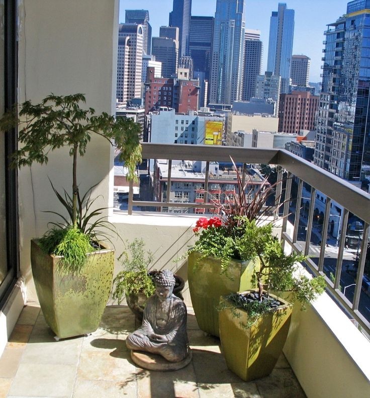 No space? You can create a corner for contemplation even on a small city balcony. Citrus green planters hold a variety of interest, including a bonsai tree, and a gracefully arching Japanese Maple.