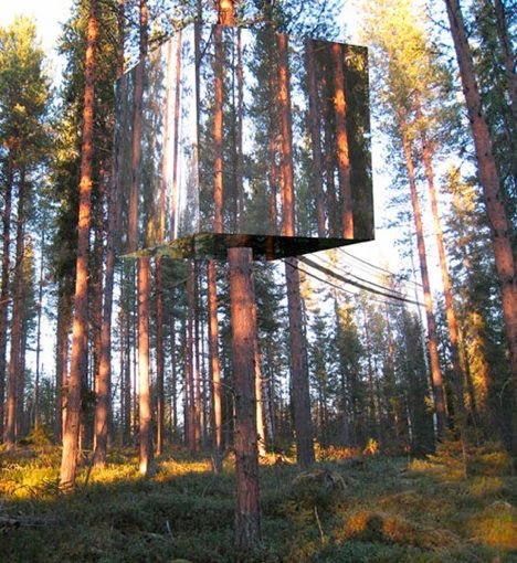treehouse by tham videgard hansson is almost invisible