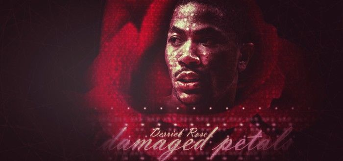 Derrick Rose-Damaged Petals