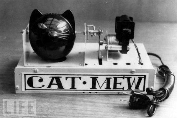 O Cat-Mew, um invento de 1963, é o primeiro dispositivo para afastar ratos verdadeiramente amigo dos animais. Contrariamente às outras armadilhas, não captura ou mata os pequenos roedores. Ao invés, produz de 5 em 5 segundos um som que imita o miar do gato com o fim de meter medo aos ratinhos. Funciona com duas pilhas que alimentam um pequeno motor. Made in Japan, é claro.  Leia mais: http://obviousmag.org/archives/2009/10/invencoes_idiotas_seculo_xx.html#ixzz2NoT76Al6