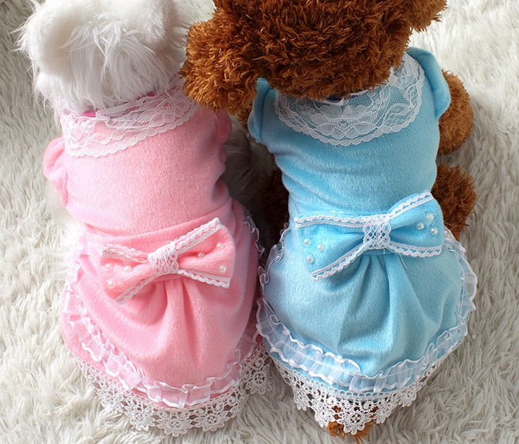 Sweet 100%Cotton Lace Bubble Sleeve Pearl Pet Skirt Dog Dress Clothes // FREE Shipping //     Buy one here---> https://thepetscastle.com/sweet-100cotton-lace-bubble-sleeve-pearl-pet-skirt-dog-dress-clothes/    #hound #sleeping #puppies