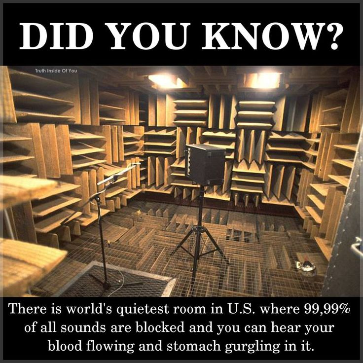 62 best Did You Know? images on Pinterest | Did you know ...