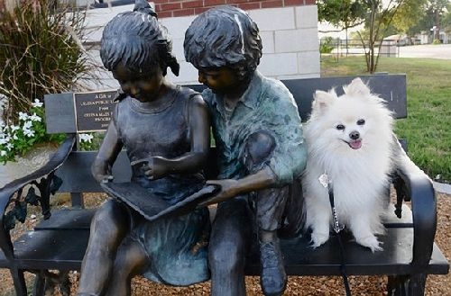 Funny Pictures With Statues › Zuza Fun
