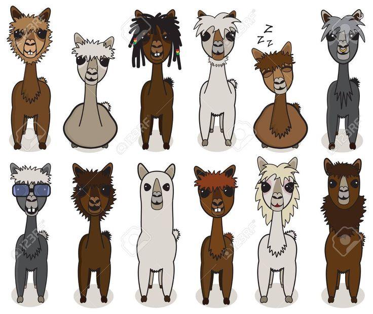 Best 25 Baby Llama Ideas On Pinterest: Best 25+ Alpaca Cartoon Ideas On Pinterest
