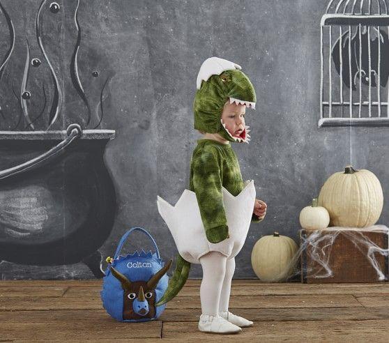 Baby Dinosaur Egg Costume Pottery Barn Kids Emmett S