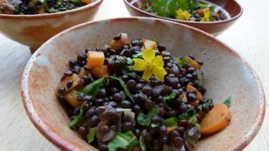 Feiner Beluga-Linsen-Salat