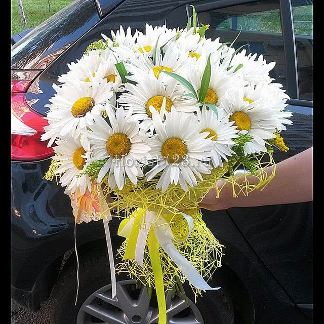 Букет из летних ромашек #цветы #ромашки #букет #доставкацветов #доставкацветовкраснодар #краснодар