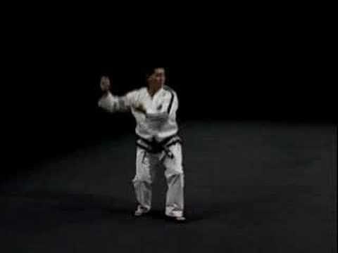 Instructions for ITF Taekwondo Pattern 8 (Hwa-Rang) - Black Belt Wiki