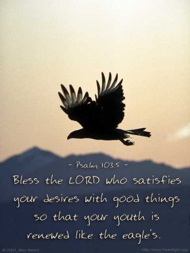 ...Who satisfies your desires with good things   so that your youth is renewed like the eagle's. ~ Psalms 103:5