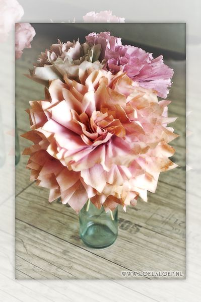 coffee filter flower picture only