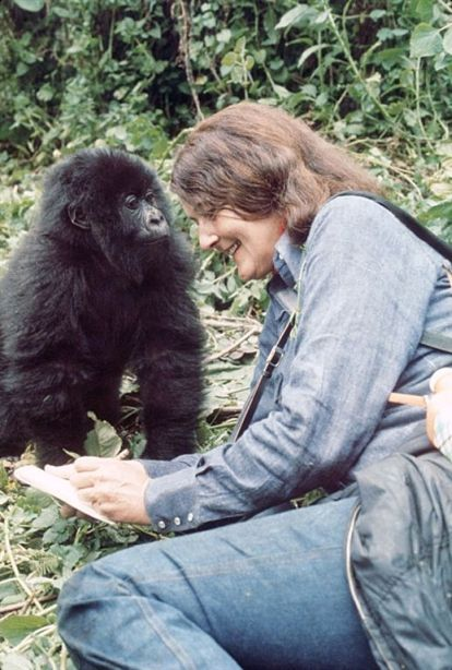 """""""When you realize the value of all life, you dwell less on what is past and concentrate on the preservation of the future."""" Dr. Dian Fossey"""