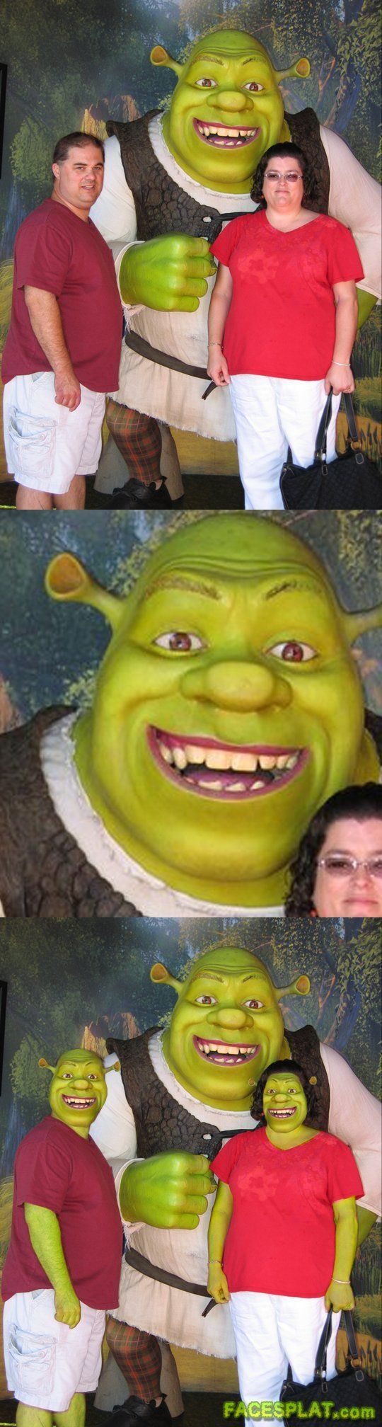 face swap | shrek-face-swap.jpg
