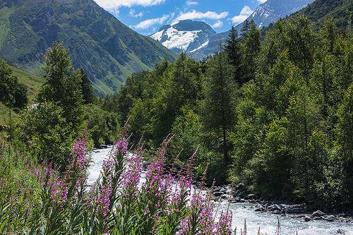 Le Doron de Champagny coule sous le regard lointain de la Grande Motte (3653 m) | Alpes
