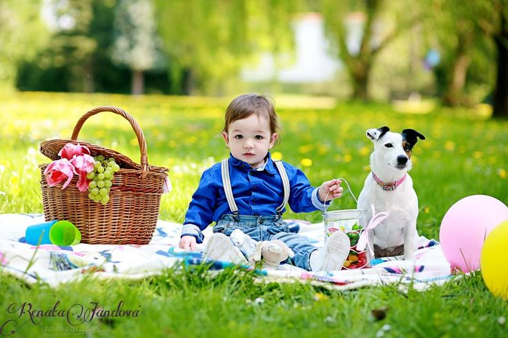 rodinná focení,piknik