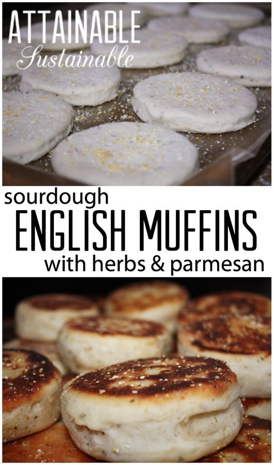 This herb & parmesan sourdough English muffin recipe is a winner! Perfect for breakfast or snacks.