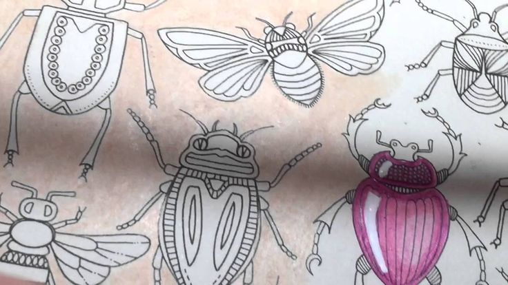 Adult Coloring With ILene Vick: How To Color Bugs To Make Them Look Like...