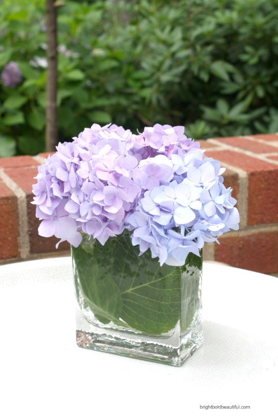 simple hydrangea arrangement idea: wrap hydrangea leaves around the sides of the glass container
