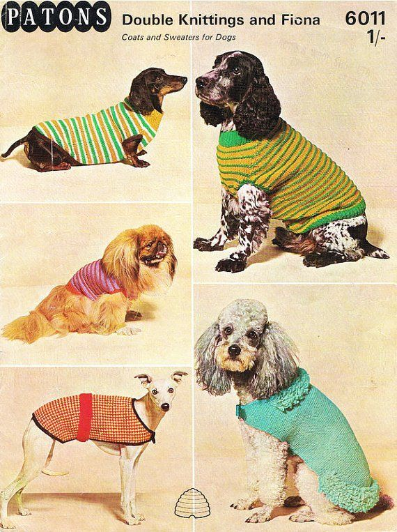42 best images about Knit for Dogs on Pinterest