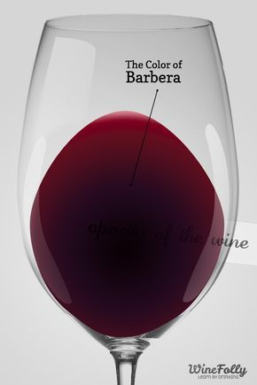 Get to Know Barbera Wine   Wine Folly