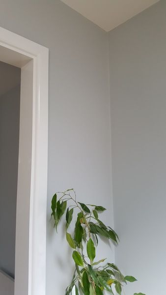 Found a nice grey and I love white gloss | Mumsnet Discussion
