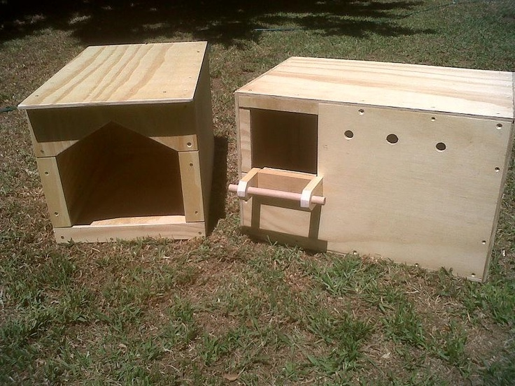 Spotted Eagle Owl And Barn Owl Houses Assembled Owl 39 S