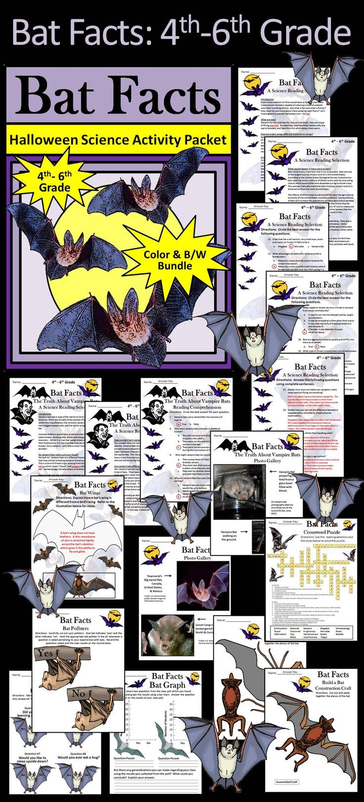 Bat Facts 4th - 6th Grade Activity Packet Bundle: Halloween activity packet in which your students will learn all about bats. Contents include: * Reading selections - Bat Facts &The Truth About Vampire Bats * Comprehension quizzes - Bat Facts & The Truth About Vampire Bats * Bat & Vampire Bat photo gallery * Crossword puzzle * Bat division coloring sheet * Bat class poll * Two bat construction craft activities * Four coloring sheets * Answer keys #Bats #Halloween #Science #Activities
