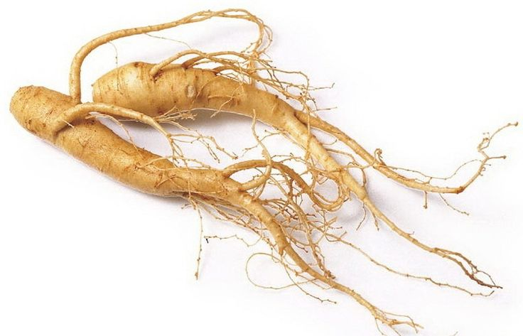 Panax Ginseng and its Testosterone and Nitric Oxide Boosting Benefits