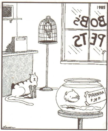 One of the funnier far side comics.